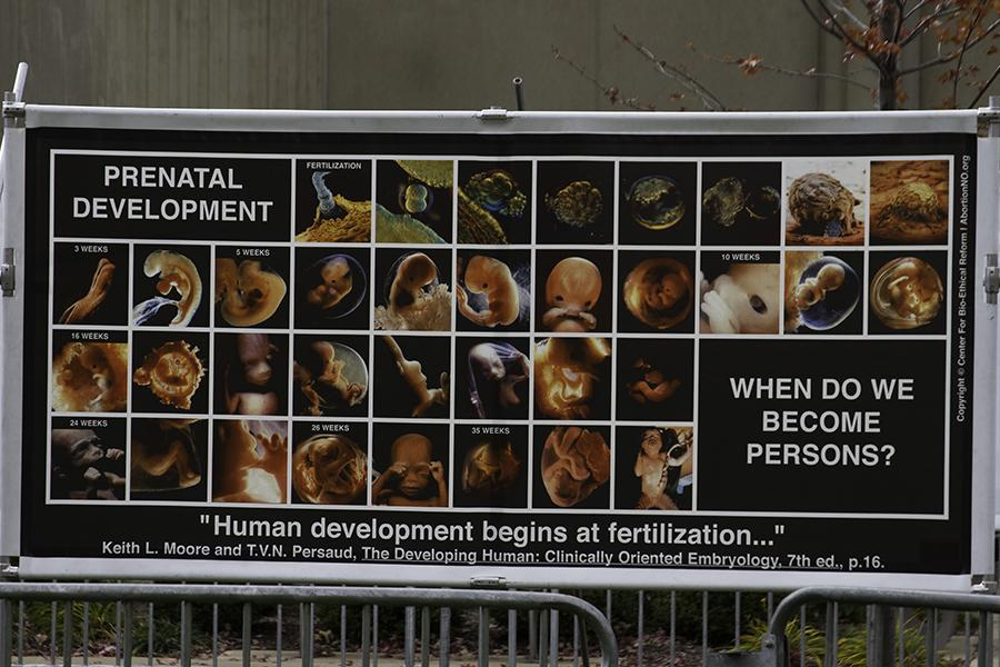 Anti-abortion group aims 'to educate' campus through use of graphic images