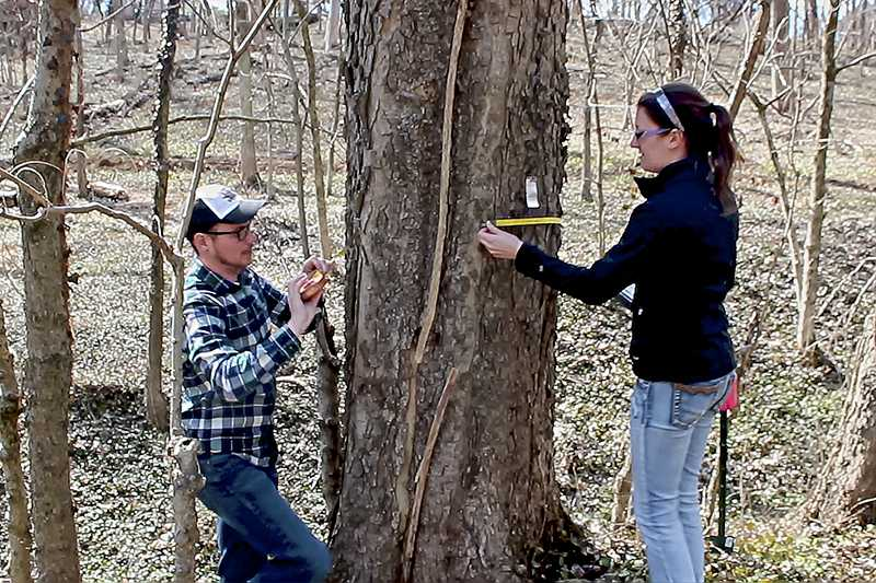 Students channel passion to save local urban forest