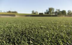 Fake grass brings benefits