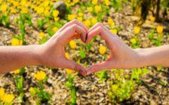 Finding hope: Raising suicide awareness at NKU