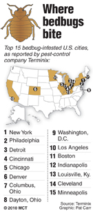 Top bedbug-infested cities