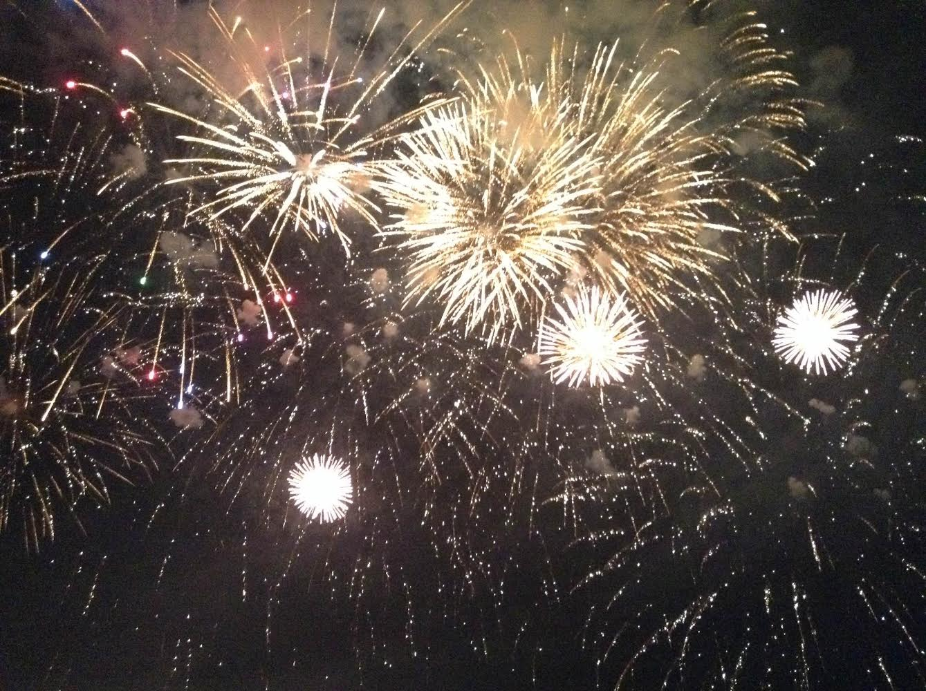 Fireworks brighten the sky during Coney Island's Fire Up the Night event.