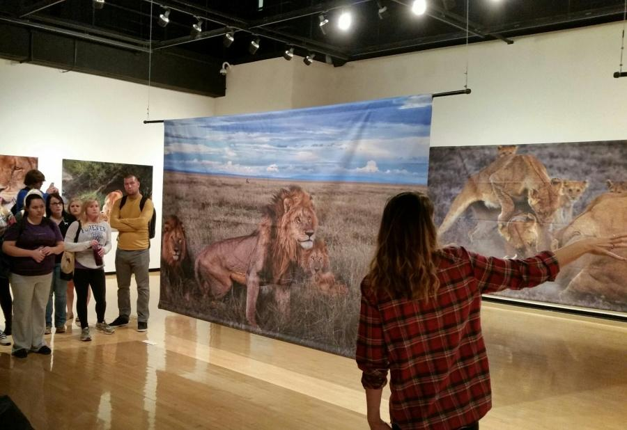 Keefe+gives+school+tours+of+%22The+Short+Happy+Life+of+a+Serengeti+Lion%22+photo+exhibit+in+the+NKU+Fine+Arts+Main+Gallery.