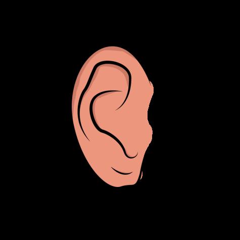 Ear_Kibler