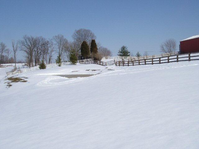 McCoy's farm is nestled in Boone County, Kentucky. As the snow begins to fade, McCoy looks forward to getting the farm in gear for springtime and growing produce.