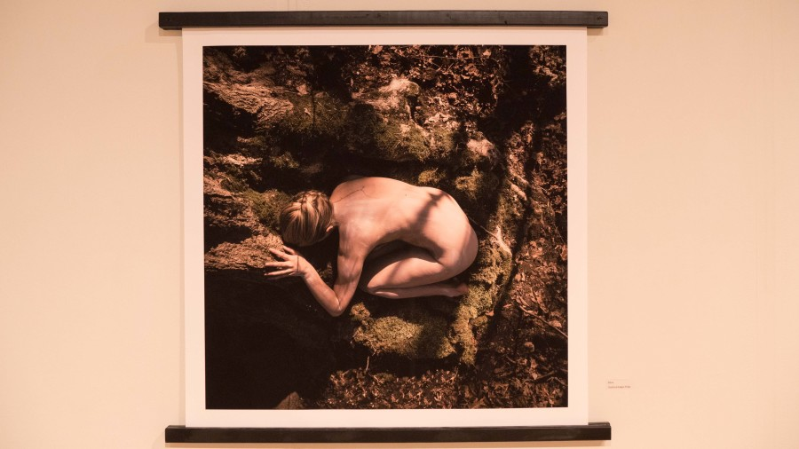McCarty's photographs reflect her experience with depression. As she got stronger, so did her photographs.