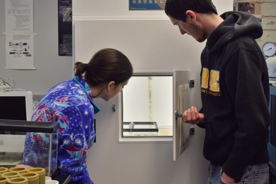 Against the smog: NKU science students, faculty reflect on proposed federal budget cuts