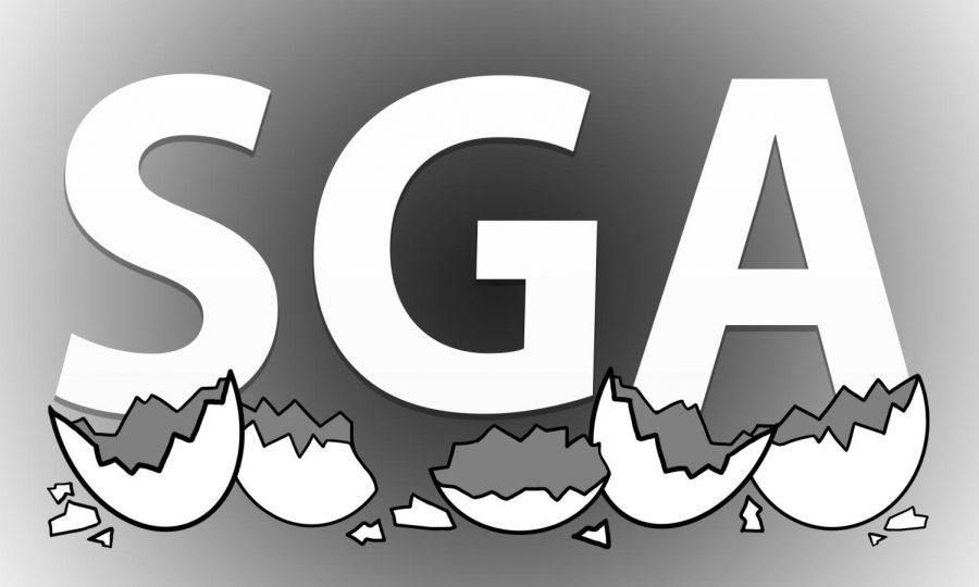 Former SGA senators El Goebel and Xavier Sullivan discuss their experience in SGA. Goebel described their experience as