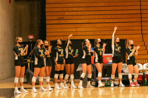 Players on the NKU volleyball team cheer from the bench as the Norse defeat IUPUI on Saturday.